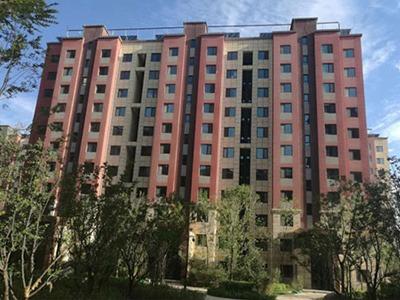 青海西宁城北国际村—真石漆保温装饰一体板应用